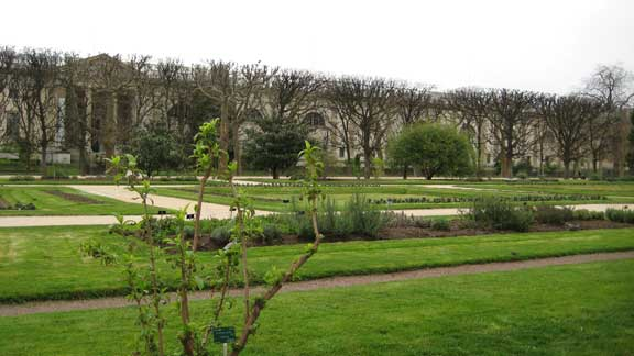 Jardin des Plantes photo image
