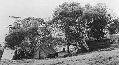 Main Camp photo image