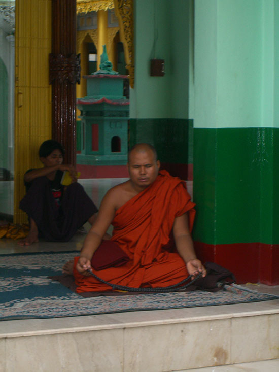 Monk photo image