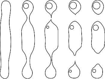 Healing diagram