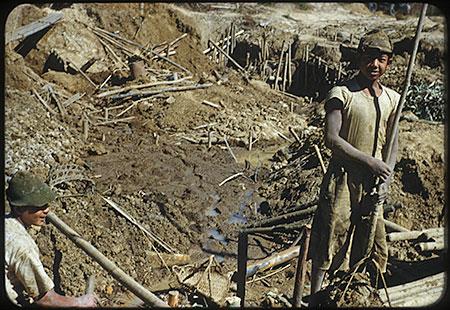 Miners photo image