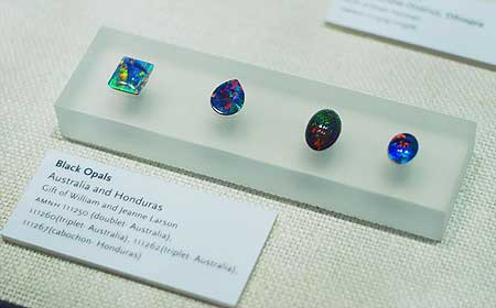 Opals photo image