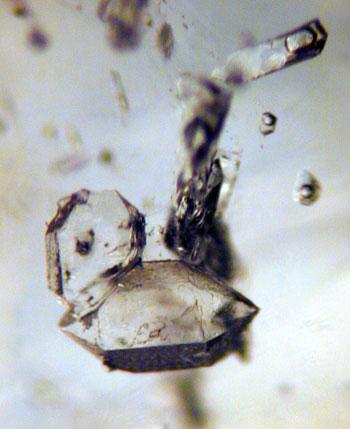 Quartz Crystals microphoto image