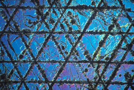 Sapphire photomicrograph image