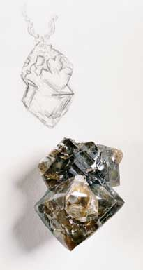 Rough Diamond photo image